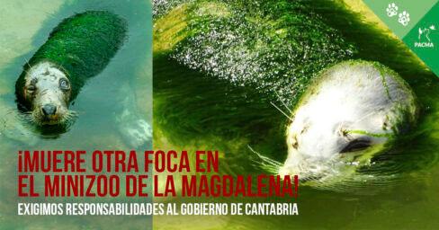 Zoo La Magdalena Pacma