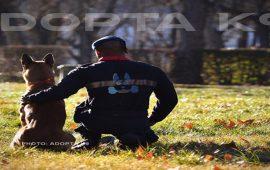 Entrevistamos a Nuria Pintado de la asociación Adopta K9