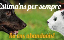El Ayuntamiento de Palma presenta la campaña «ADOPTA, no los abandones»