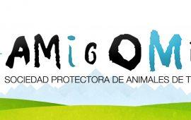 El Ayuntamiento de Teruel cede a la Sociedad Protectora de Animales de la capital el uso del albergue de perros y gatos