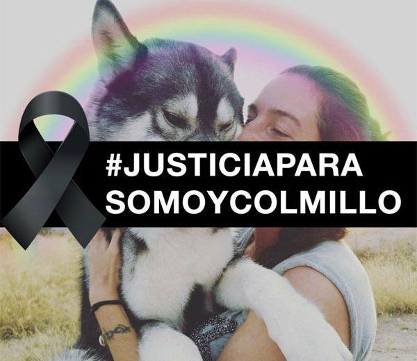 Justicia Somo y Colmillo