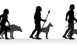 El mundo de las mascotas, desde perros a aves