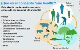 La trinidad para afrontar futuras pandemias: una sola salud humana, animal y ambiental