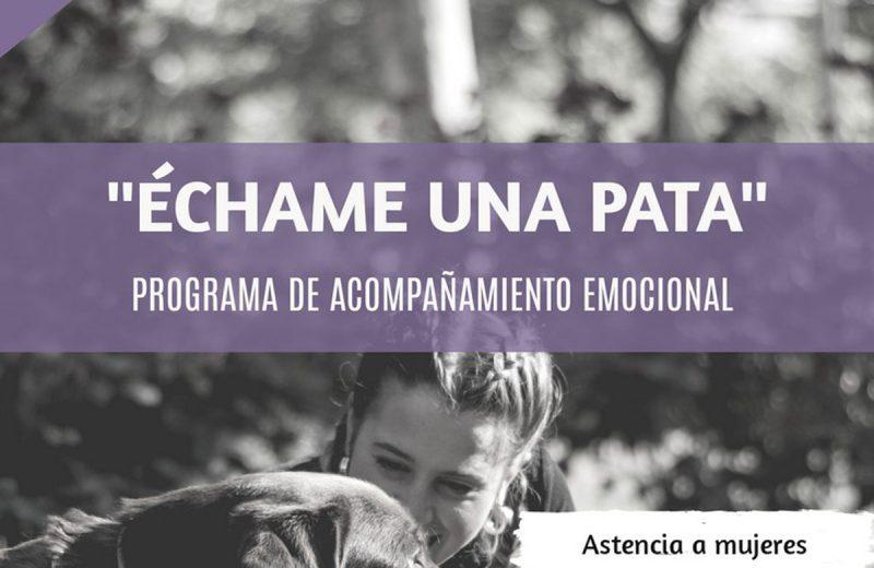 Ciudad Real comienza un proyecto de asistencia a víctimas de violencia de género con perros