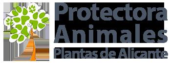 Protectora de Animales de Alicante