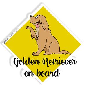 Golden on Board