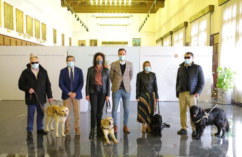 El Ayuntamiento de Zaragoza financiará el registro de ADN de todos los perros guías de la ciudad