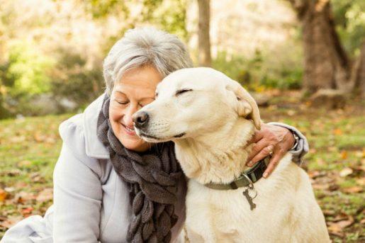 Perros y personas mayores
