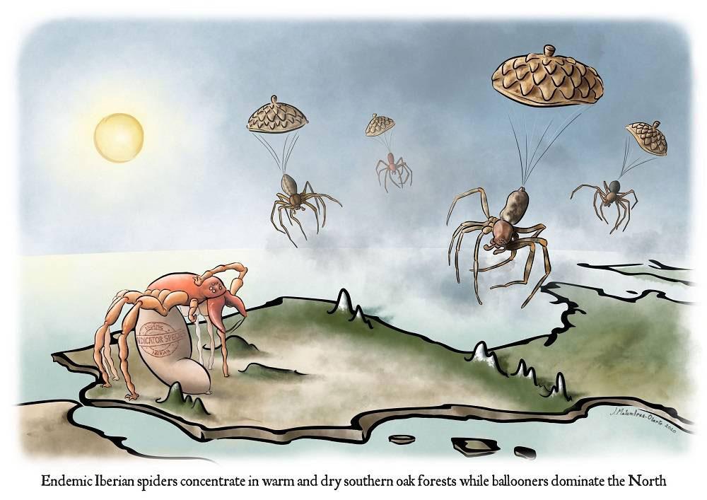 Arañas ibéricas