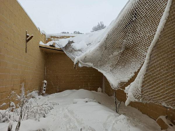 Destrozos de la nevada
