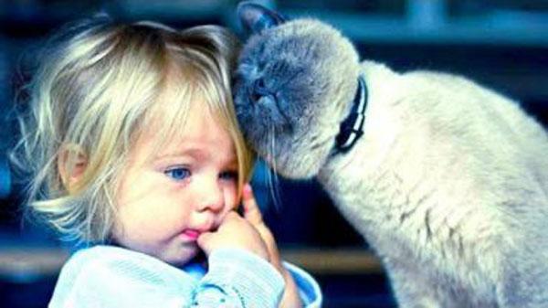 Gato con niño