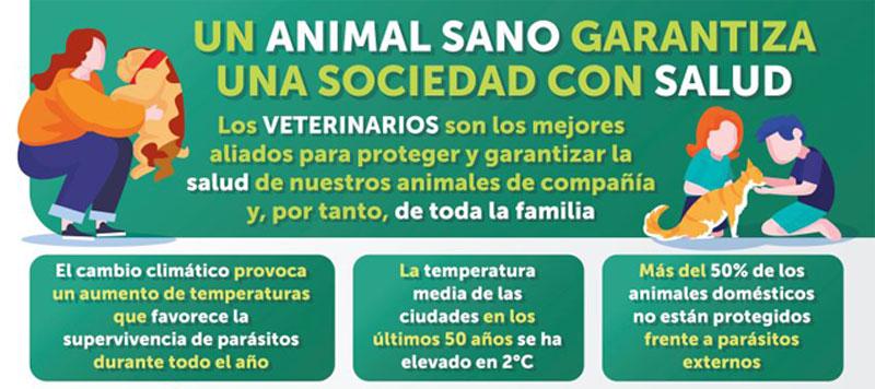La OCV destaca la importancia de prevenir y proteger a los animales domésticos frente a parásitos externos durante todo el año
