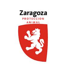 Zaragoza Protección Animal