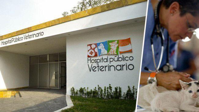 Hospital Veterinario Público