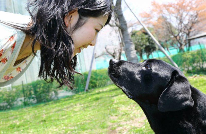 Mirada de perro y su dueño