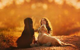 Vivir con perros mejora el desarrollo social y emocional en la infancia