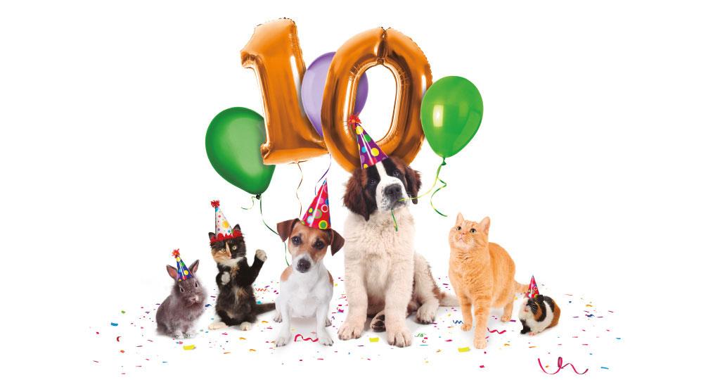 100×100 MASCOTA 2021, la Feria del Animal de Compañía se celebrará en Madrid los días 25 y 26 de septiembre