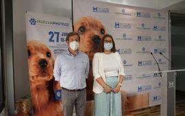 I Feria de adopción de mascotas 'Huelva Protege' el domingo 27 de junio