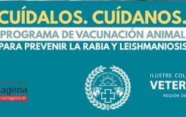 El Ayuntamiento de Cartagena y el Colegio de Veterinarios de Murcia colaboran en el cuidado de la salud de las mascotas