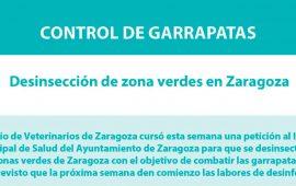 Esta semana se desinsectarán las zonas verdes en Zaragoza para controlar las garrapatas