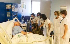 Los pacientes ingresados con patologías severas y terminales podrán recibir a su mascota