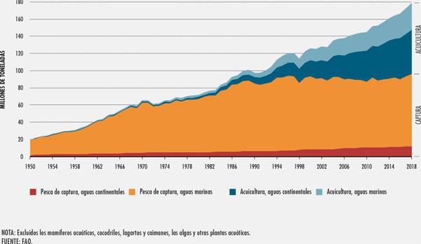 Producción mundial de la pesca y la acuicultura en 2018