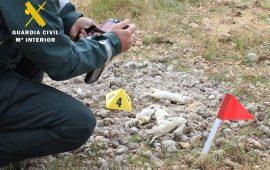 El Seprona de Burgos investiga a una persona vinculada a un centro canino por maltrato animal