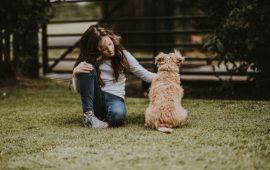 Juristas y expertos en protección de menores piden que pueda denegarse la guarda y custodia a progenitores que maltratan a sus animales