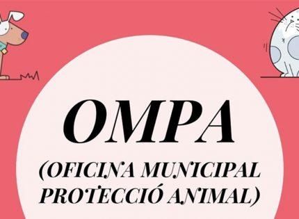 Poner en valor la protección animal