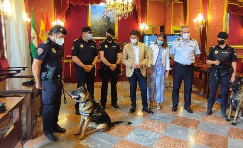 Granada recupera la Unidad Canina de la Policía Local con la reincorporación del perro Stan Lee y de su guía
