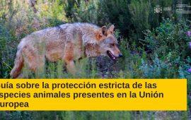 La Guía para la protección estricta de especies animales de la Comisión Europea