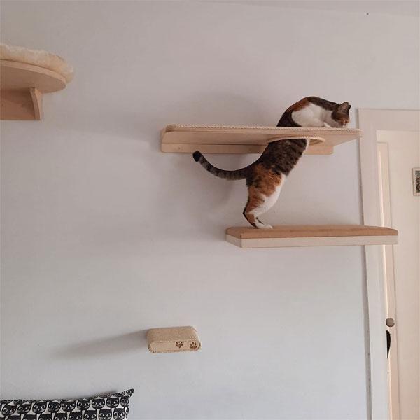 Muebles realizados para gatos
